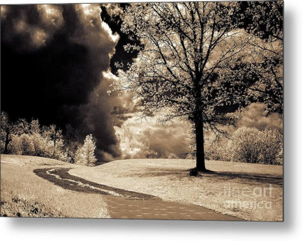 Surreal Dark Gothic Infrared Sepia Trees Clouds Landscape Metal Print