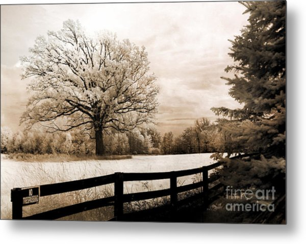 Surreal Dreamy Infrared Trees Nature Sepia Ethereal Landscape With Fence Metal Print