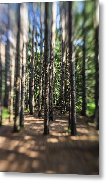 Surreal Forest Metal Print
