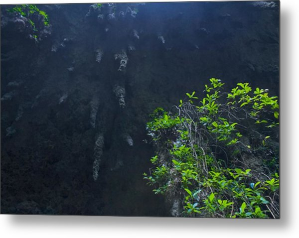 Surreal Stalactites At The Camuy Caverns Metal Print by Sandra Pena de Ortiz