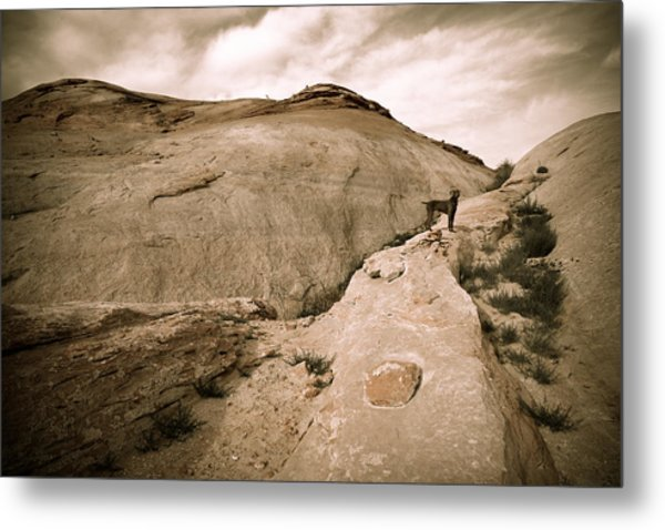 Surveying The New Camp Metal Print