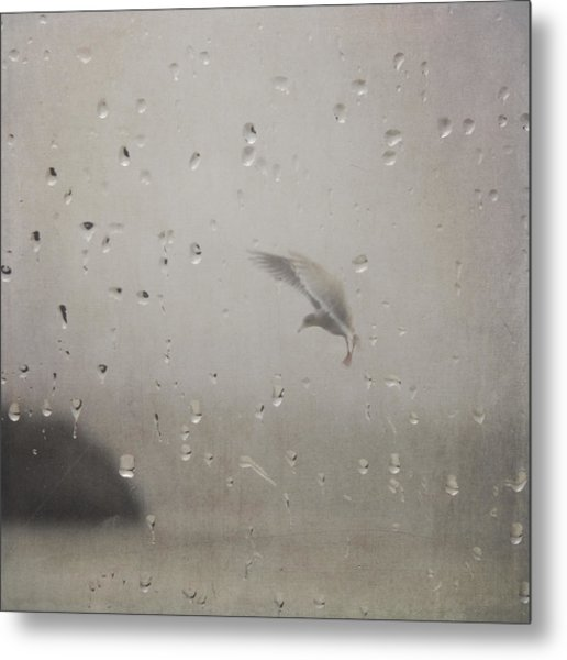 Metal Print featuring the photograph Suspended by Sally Banfill