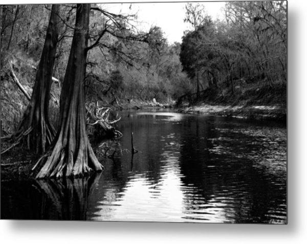 Suwannee River Black And White Metal Print