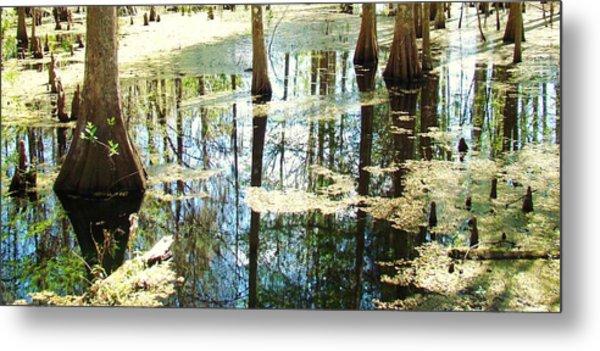 Swamp Wading 5 Metal Print by Van Ness