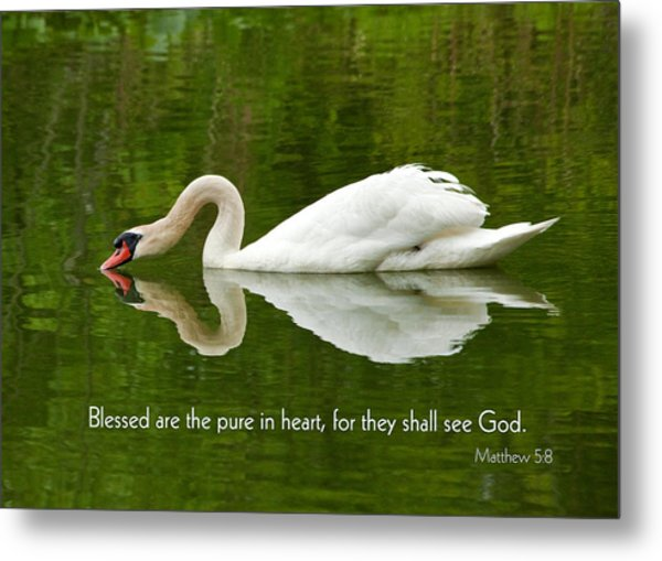 Swan Heart Bible Verse Greeting Card Original Fine Art Photograph Print As A Gift Metal Print