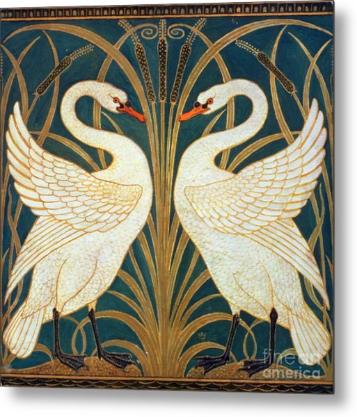 Swan Rush And Iris Metal Print
