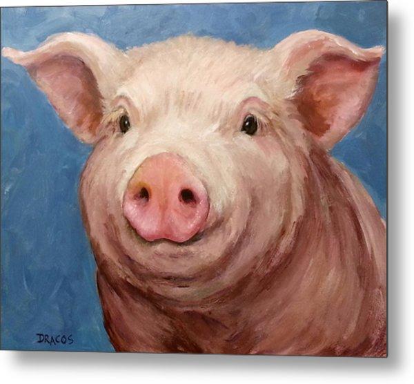 Sweet Baby Pig Portrait Metal Print