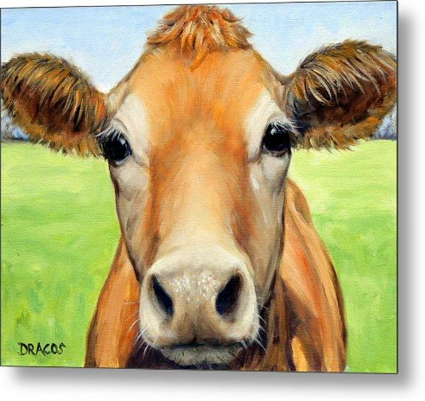 Sweet Jersey Cow In Green Grass Metal Print