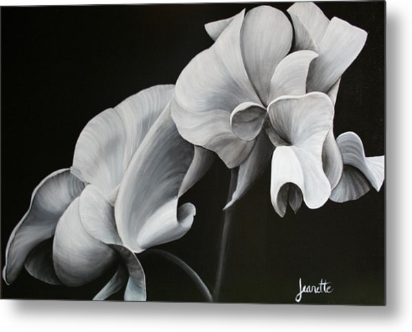 Sweetpea Blossoms Metal Print