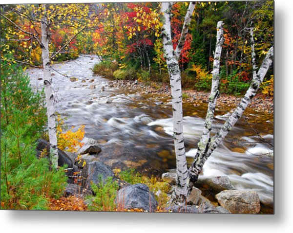 Metal Print featuring the photograph Swift River by Michael Hubley