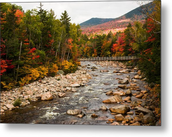 Swift River Painted With Autumns Paint Brush Metal Print