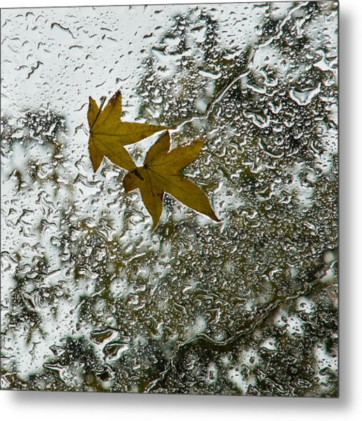 Symbols Of Autumn  Metal Print