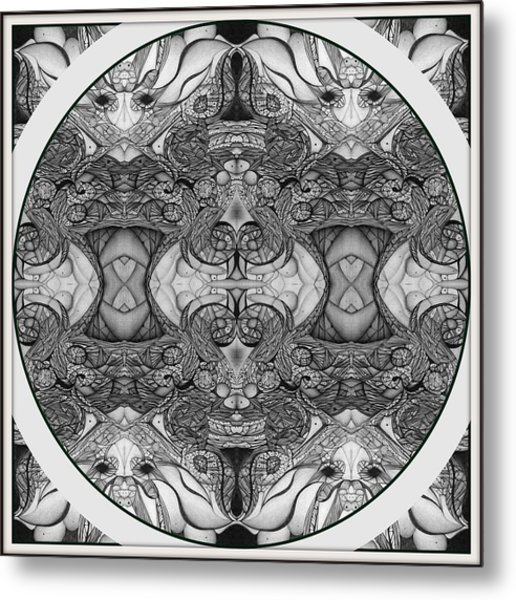 Symmetry  In Black And White Metal Print