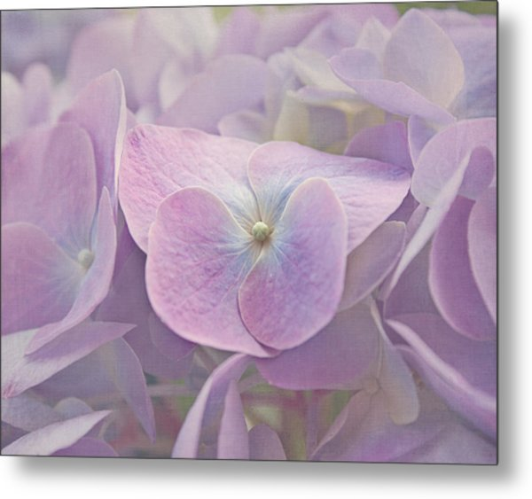 Symphony In Purple Metal Print