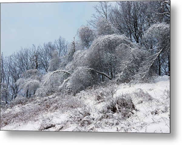 Syracuse Ice Storm Metal Print