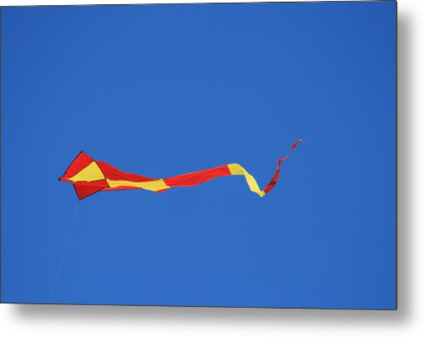 Tail Kite And Blue Metal Print by Phoenix De Vries