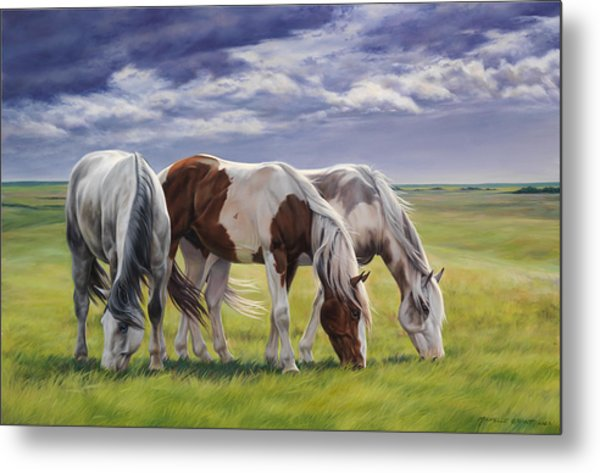 Tail Wind Metal Print