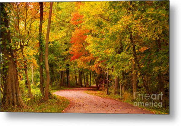 Take Me To The Forest Metal Print