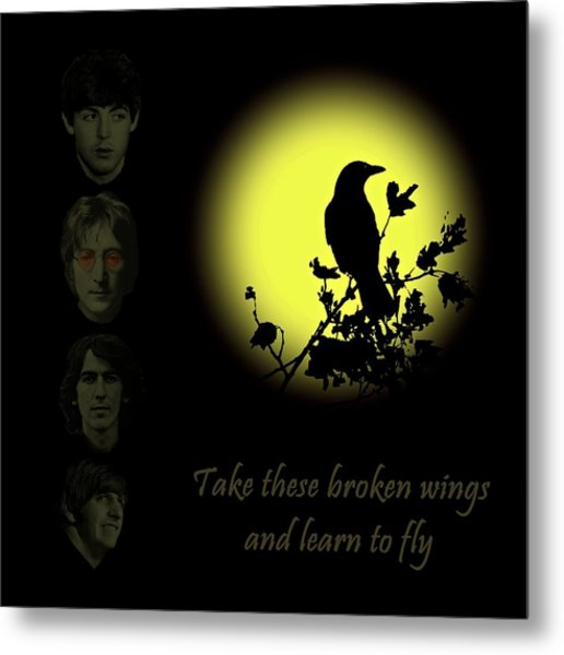 Take These Broken Wings And Learn To Fly Metal Print