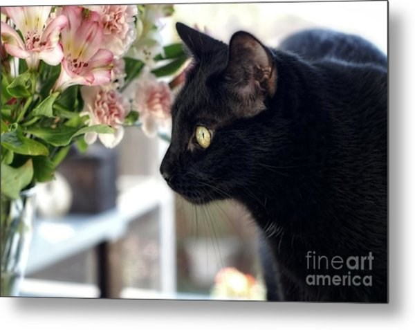 Take Time To Smell The Flowers Metal Print