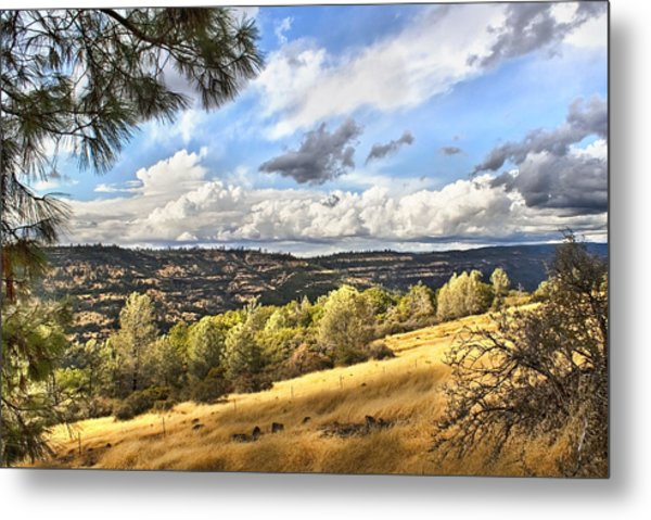 Taking A Ride Up Highway 32 Metal Print