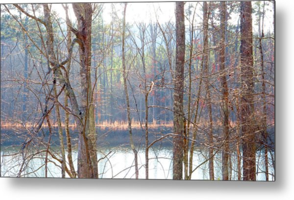 Tallapoosa Metal Print by Keith May