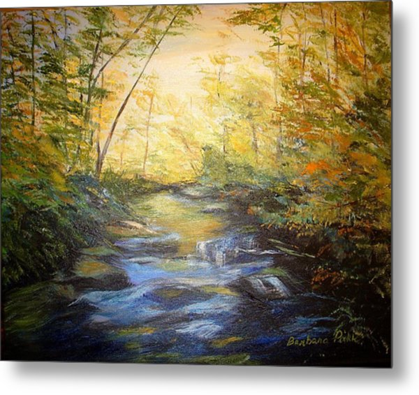Tallulah River Color Metal Print by Barbara Pirkle