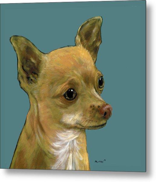 Tan Chihuahua Metal Print
