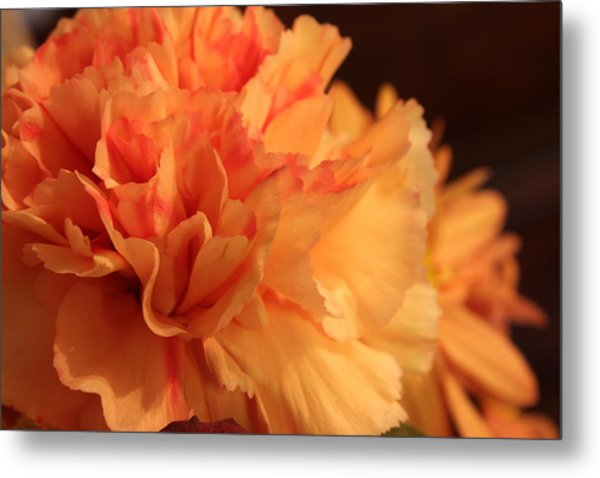 Tangerine Dreams Metal Print