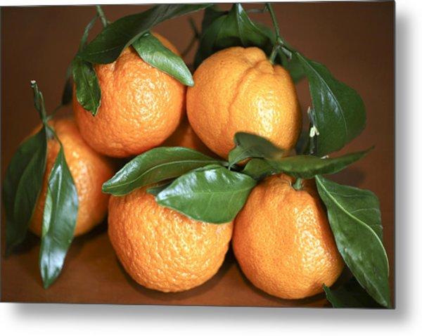 Oranges Metal Print by Michael Riley