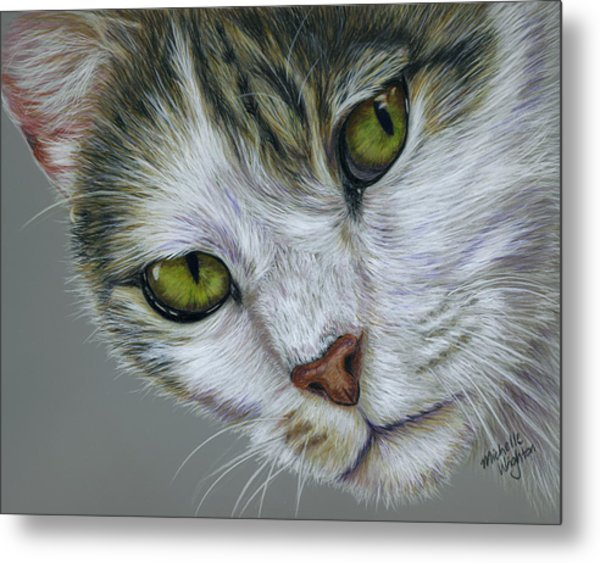 Tara Cat Art Metal Print