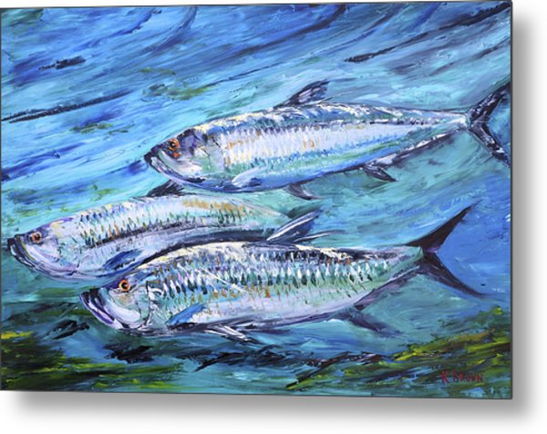 Metal Print featuring the painting Tarpon On The Move by Kevin  Brown