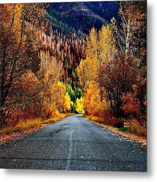 #tbt #2009 #fall #colours Metal Print