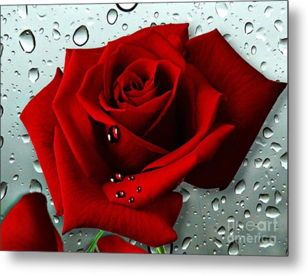 Tears From My Heart Metal Print
