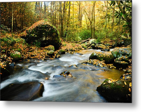 Tennessee Stream In Fall Metal Print