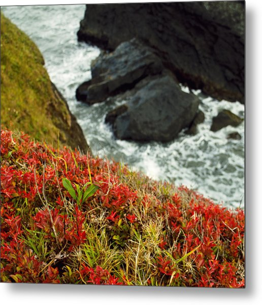 Tepona Point Metal Print
