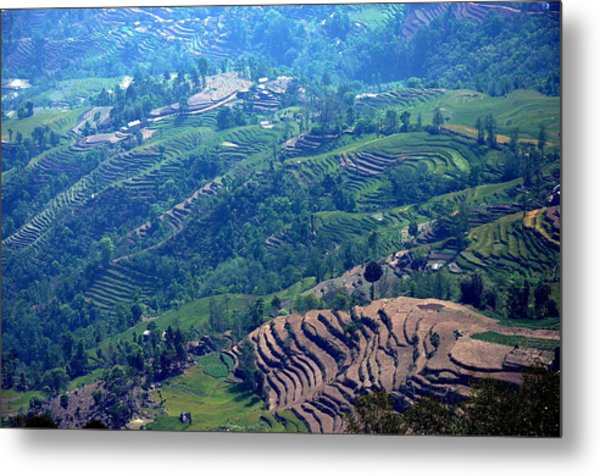 Terraced Slopes Metal Print by Gerard Goh