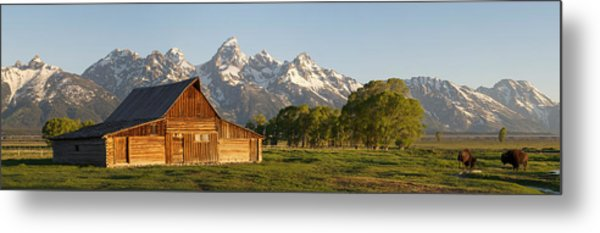 Teton Barn With Bison Metal Print