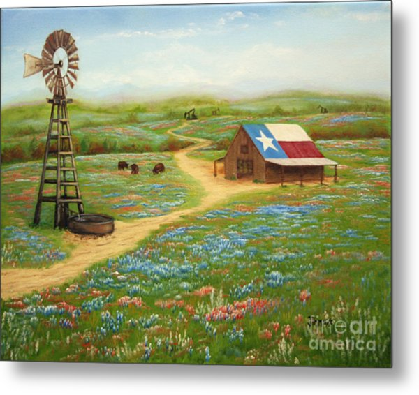 Texas Countryside Metal Print