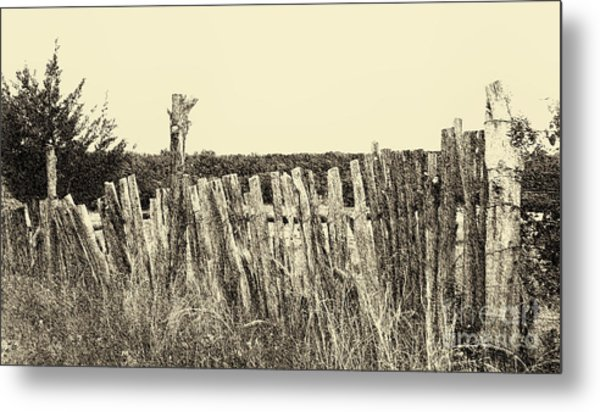 Texas Fence In Sepia Metal Print