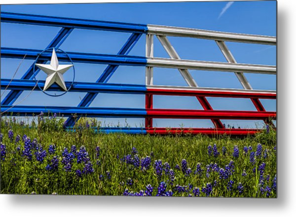 Texas Flag Painted Gate With Blue Bonnets Metal Print