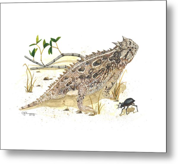 Texas Horned Lizard Metal Print