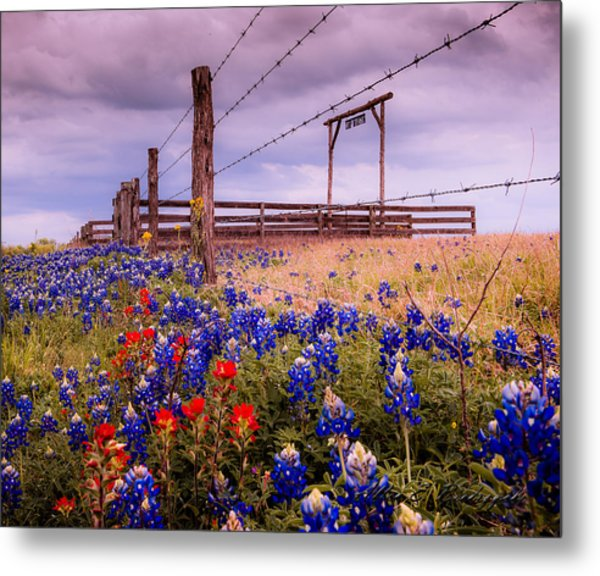 Texas Spring Fence Metal Print