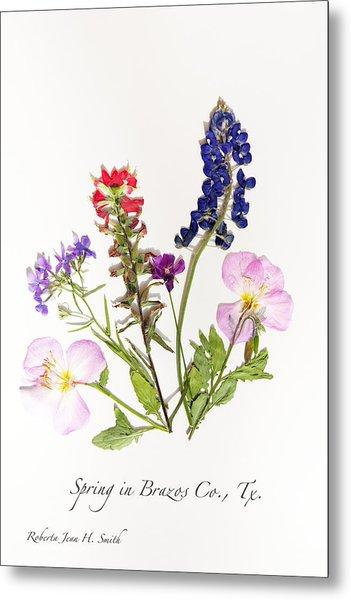 Texas Spring Flowers Metal Print