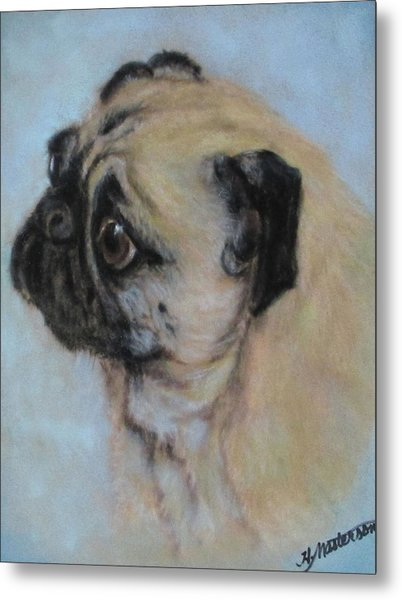 Pug's Worried Look Metal Print