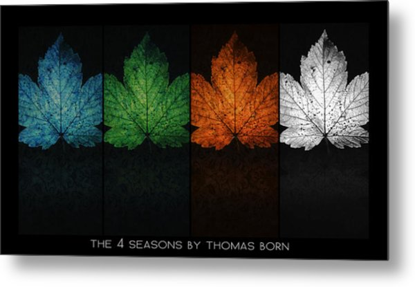 The 4 Seasons By Thomas Born Metal Print