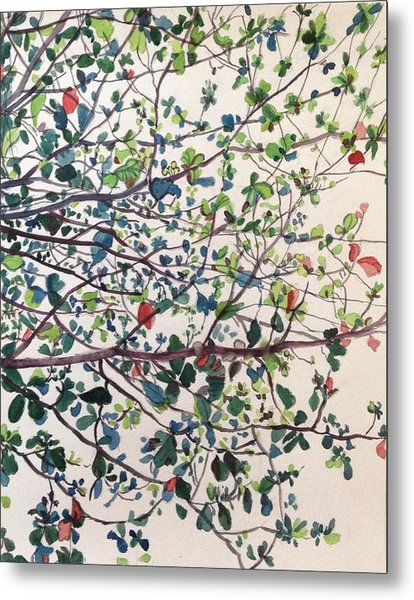The Almond Tree Metal Print by Aditi Bhatt