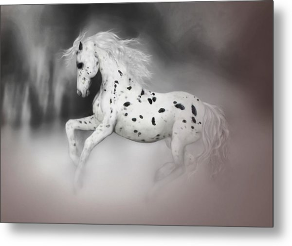 The Appaloosa Metal Print