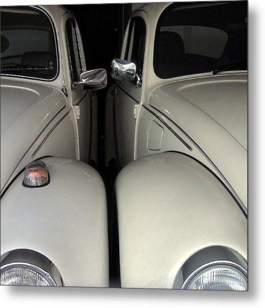 The Authentic Love Bugs Metal Print