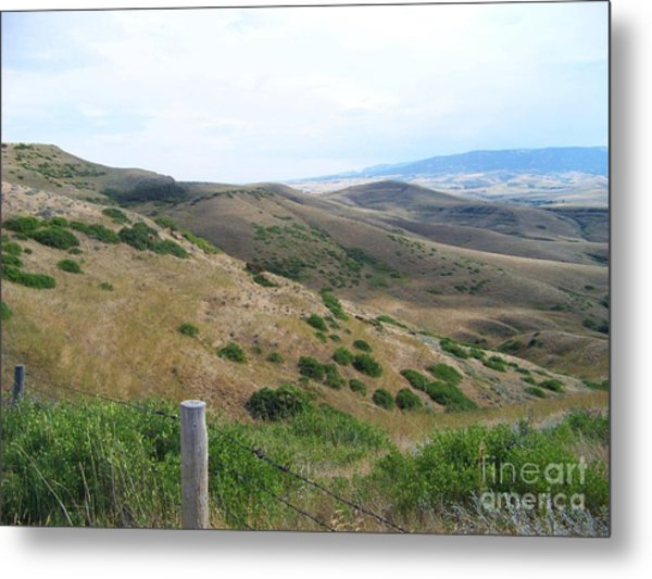 The Battle Of Little Big Horn Metal Print
